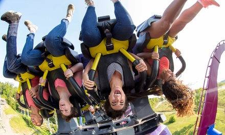 One Day Admission for One Plus All-Day Drink Wristband at Kings Island (51% Off)
