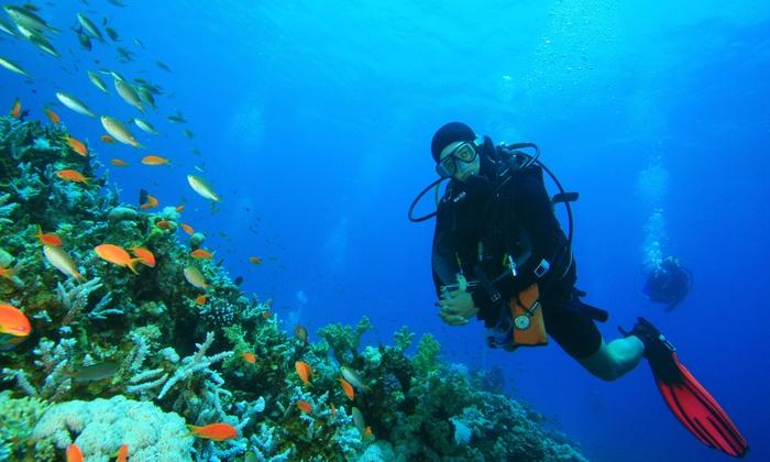 Deep Six Divers Service, Inc - Lake Somerset: $60 Off Wetsuit at Deep Six Divers Service, Inc