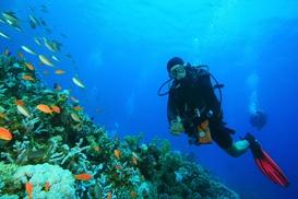 Deep Six Divers Service, Inc: $60 Off Wetsuit at Deep Six Divers Service, Inc