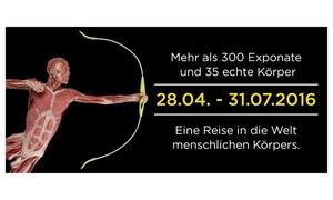 """Real Bodies Ausstellung Dresden: 2 Eintrittskarten für die Ausstellung """"Real Bodies"""" im Sarrasani Trocadero Theaterin Dresden (bis zu 34% sparen)"""
