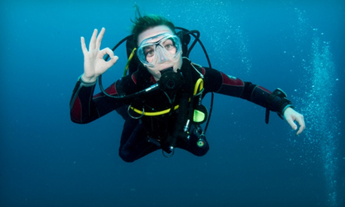 H2O Dive Center - North Miami: Discovery Scuba One-Day Experience or Open-Water Diver-Certification Courses from H2O Dive Center (Up to 66% Off)