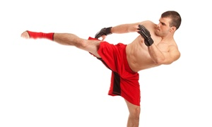 TAMA Martial Arts Center: One or Two Months of Unlimited Muay Thai Kickboxing Classes with Gear at TAMA Martial Arts Center (Up to 54% Off)