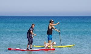 Kitesurf Guide: 2 Std. Stand-Up-Paddling oder RIG-Surfen mit aufblasbarem Segel für 1 oder 2 Personen bei Kitesurf Guide (50% sparen*)