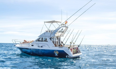 Excursión en barco para pescar de 4 horas para 1, 2 o 4 personas desde 34,90 € en Pelagic Charters