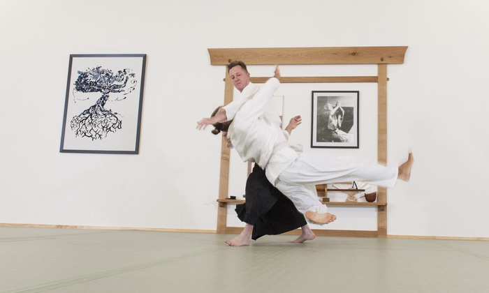 Martial Arts Training In Aikido Houston Aikido Groupon