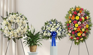 Up to 50% Off Sympathy Flowers and Funeral Arrangements