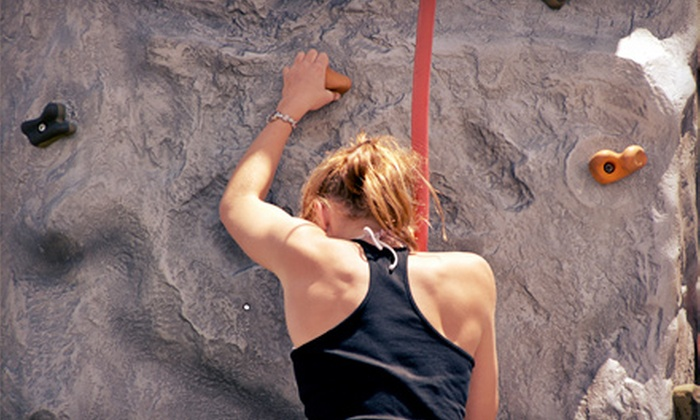 Niagara Climbing Center - North Tonawanda: Two or Four Rock-Climbing Day Passes or 90-Day Unlimited Membership at Niagara Climbing Center (Up to 61% Off)