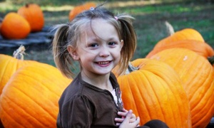 33% Off an Autumn Farm Visit at Priddy Farms, plus 9.0% Cash Back from Ebates.