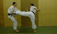 Six or Twelve Karate Classes for One or Two at a Choice of Locations with Karate Do Shotokai