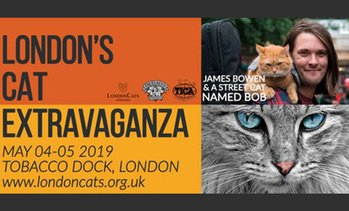 08774463102 image placeholder LondonCats International Show  Child (£10) or Adult  (£17.50) Ticket