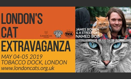 LondonCats International Show on 4–5 May at Tobacco Dock