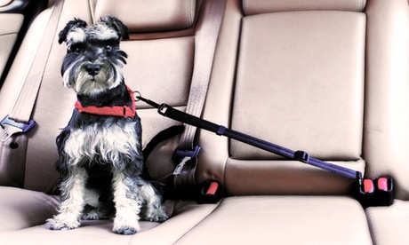 Cinturón de seguridad universal para mascotas AGD