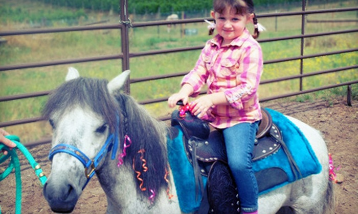 Oregon Dream Ponies - Newberg: One-Hour Pony Experiencefor One, Two, or Four from Oregon Dream Ponies (Up to 55% Off)