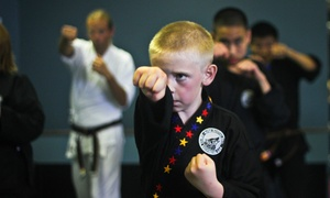 Alpha Martial Arts : $49 for One Month of Kid, Teen, or Adult Beginner Karate Classes at Alpha Martial Arts ($235 Value)