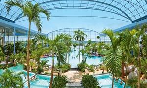 THERMEN & BADEWELT SINSHEIM: Tageskarte für das Palmenparadies inkl. Schwimmbad, Leihhandtuch, Duschgel und Prosecco in THERMEN & BADEWELT SINSHEIM