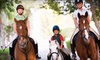 Hylee Training - Mission: Four Private Horseback-Riding Lessons or a 12-Week Riding Program for a Child at Hylee Training (Up to 56% Off)