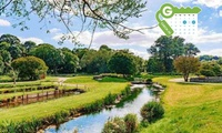 Daff-idyllic Breaks | Groupon