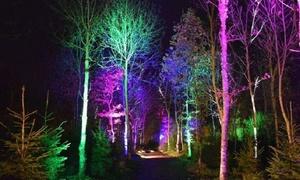 Mystical Gardens: Mystical Gardens Light Show, Adult or Family Ticket, 23 - 25 February, Glasgow Botanical Gardens