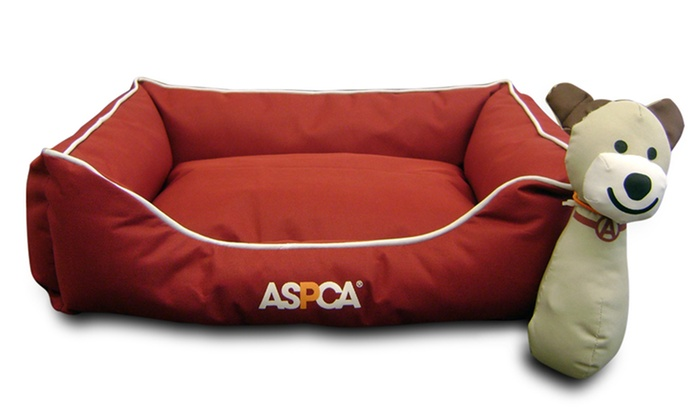 aspca water- and chew-resistant pet bed (2-piece)   groupon