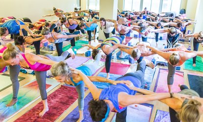 image for A Ten-Class Pack of Yoga Classes Down Dog Yoga (69% Off)