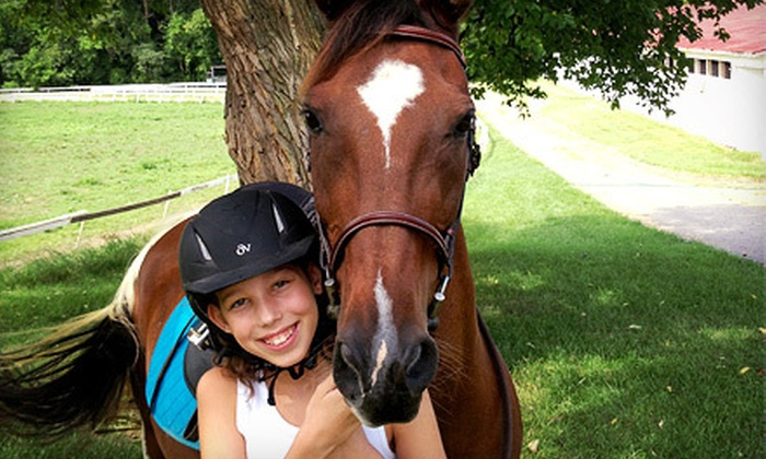 James Run Equestrian Center - 1, Abingdon: Two, Four, or Six Group Horseback-Riding Lessons at James Run Equestrian Center (Up to 59% Off)