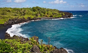 Up to 45% Off Tours from Roberts Hawaii at Roberts Hawaii, plus 9.0% Cash Back from Ebates.