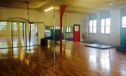 One, Four or Eights Up to 90-minute Pole Dance Classes for One or Two at A.X Pole Dancing Studio (Up to 64% Off)