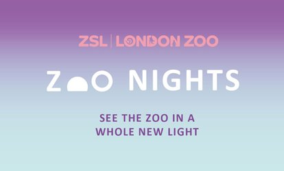 image for Zoo Nights on 1 June - 20 July at London Zoo (11% Off)