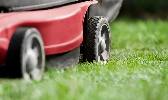 Reliable Lawn service - Tampa Bay Area: $33 for a Medium Size Lawn: Cut, Edge, and Trim by Reliable Lawn Service (a $60 value)