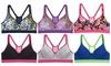 Women's Spring Sports Bras (6-Pack): Women's Spring Sports Bras (6-Pack)