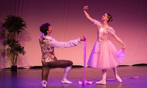 """Fundacja Warsaw Ballet Theatre: Bilet dla 2 osób na balet """"Dziadek do orzechów'', """"Giselle'' za 69,99 zł i więcej opcji z Fundacją Warsaw Ballet Theatre"""