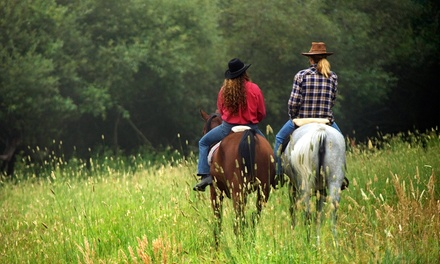 60-Minute Horseback Ride for Two or Four at Triangle T Guest Ranch (Up to 53% Off)