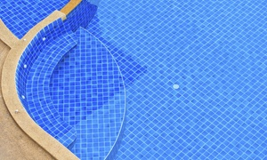 One Man and A Pool Brush: $70 Off $130 Worth of Home Swimming Pool Repair / Maintenance