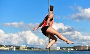 Poledance!-Kiel-: Poledance oder Aerial Hoop Probestunde für 1 oder 2 Personen in Poledance!-Kiel- (50% sparen*)