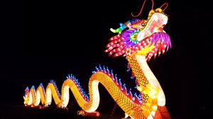 Dragon Lights: Chinese Lantern Festival –Up to 55% Off at Dragon Lights Albuquerque, plus 6.0% Cash Back from Ebates.