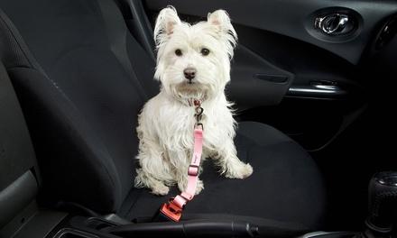 Cintura da auto per cani disponibile in vari colori