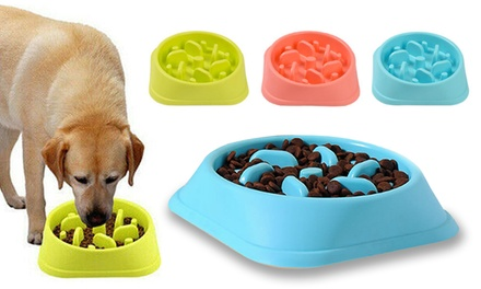 $9.95 for a Go Slow Feeding Bowl for Pets Don't Pay $39.95