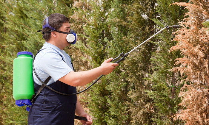 Sovereign Pest Control of Texas - Dallas: $59 for a One-Time Preventative Pest-Control Treatment from Sovereign Post Control ($300 Value)