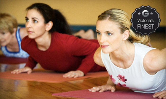 The Yoga Shala - Downtown: One-Month of Unlimited Yoga or 15 Classes at The Yoga Shala (Up to 63% Off)