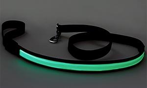 LitePaw: LED Dog Leash at LitePaw