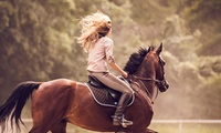 Introductory Horse Riding Lessons for One or Two at Croft Riding Centre (up to 50% Off)