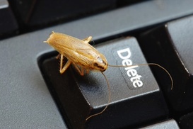 Truly Nolen of Kern County: $50 Off $100 Worth of Pest Control Service - General