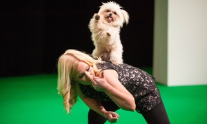 The National Pet Show: The National Pet Show: Child, Adult or Family Tickets, 7 - 8 May at ExCeL London (Up to 26% Off)