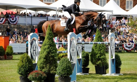 $11 for a Ticket to the 2015 American Gold Cup Show-Jumping Event at Old Salem Farm on September 12 or 13 ($21.99 Value)