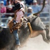 Calgary Stampede Rodeo Tickets via FanXchange