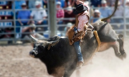 $12 to See the Davie Pro Rodeo: Orange Blossom Festival & Rodeo at Davie Pro Rodeo Arena on March 1 (Up to $20 Value)