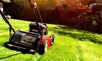 Professionelle Gartenpflege für bis zu 2 oder 4 Stunden inklusive Anfahrt bei Ever Clean (bis zu 45% sparen*)