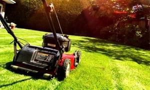 Ever Clean: Professionelle Gartenpflege für bis zu 2 oder 4 Stunden inklusive Anfahrt bei Ever Clean (bis zu 45% sparen*)