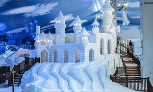 Terra e Cor Turismo: Snowland: 1 passaporte criança ou adulto + transporte para baixa, média ou alta temporada