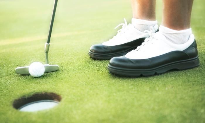 Big Sticks Indoor Golf - Burlington : Golf Lesson with PGA Pro or Golf Simulator Session at Big Sticks Indoor Golf (Up to 50% Off)